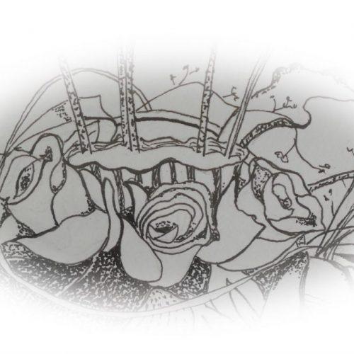 Detail rozen tekening